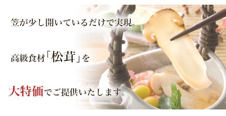 松茸が大特価