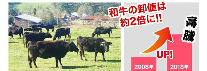 和牛の卸値はおよそ2倍に