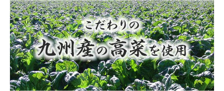 九州産高菜を使用