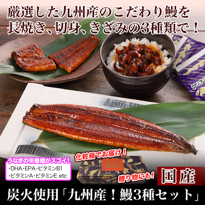 炭火使用「九州産!鰻3種セット」
