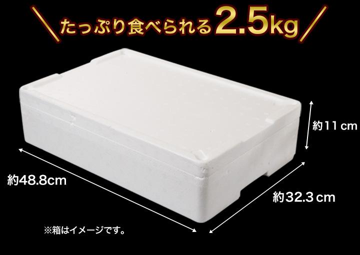 たっぷり食べられる合計2.5kgでお届け