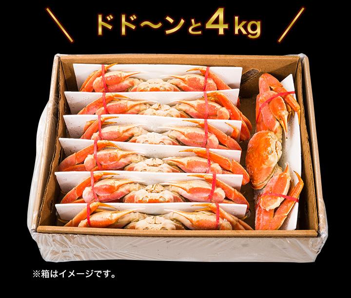 たっぷり食べられる合計4kgでお届け