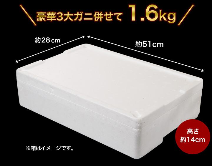 豪華3大ガニ併せて1.6kg