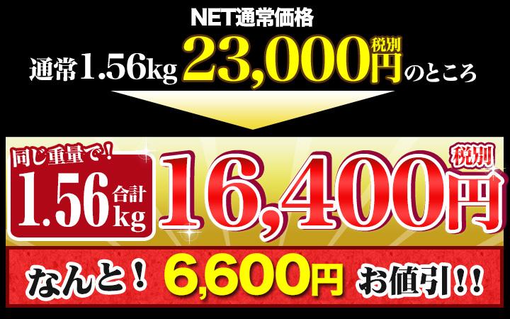 合計1.56kgで税別16,400円