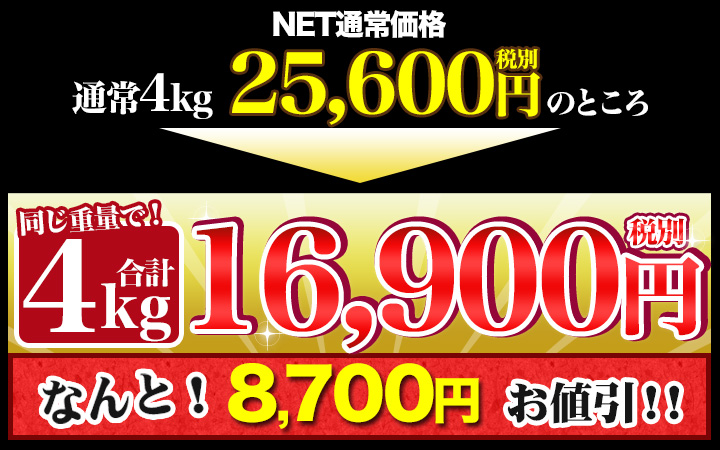 合計4kgで税別16,900円