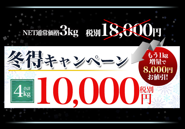 合計4kgで税別10,000円
