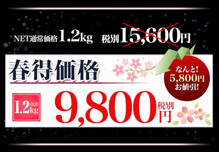 合計1.2kgで税別9,800円