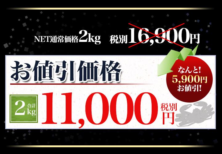 合計2kgで税別11,000円