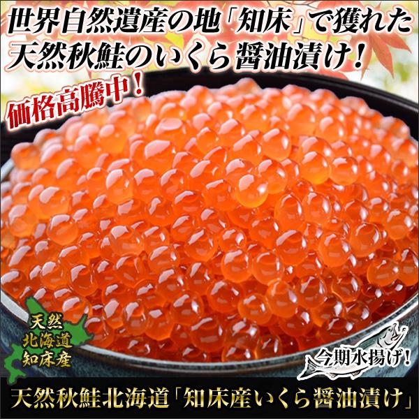 天然秋鮭北海道「知床産いくら醤油漬け」