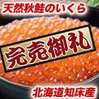 天然秋鮭北海道「知床産いくら醤油漬け」合計1kg
