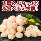 刺身用「北海道の帆立貝柱」1kg/2kg