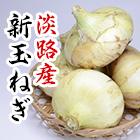 淡路産新玉ねぎ大玉2L 5kg/10kg