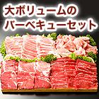 ドカ盛り「4種バーベキューセット」2kg/4kg