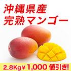 訳あり沖縄県産マンゴー1.4kg/2.8kg