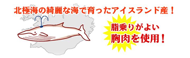 希少で美味とされるナガス鯨の胸肉