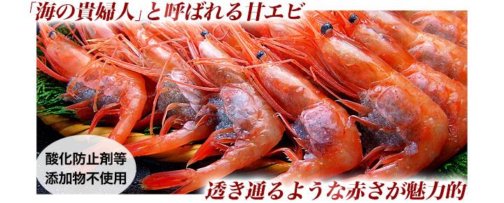 福井県の甘エビ