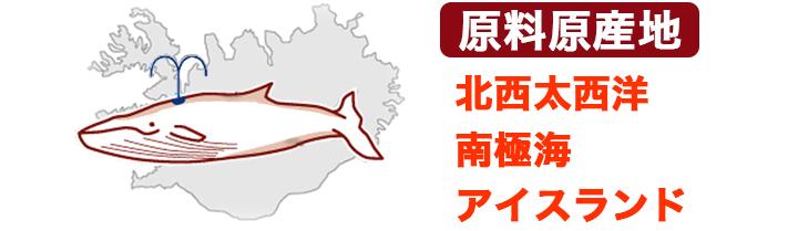 熟成 鯨赤身肉スライス10袋20袋