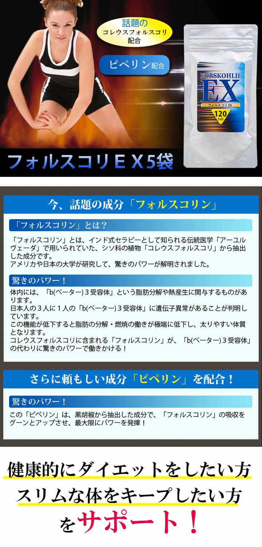 快適生活のフォルスコリEX 5(4+1)袋