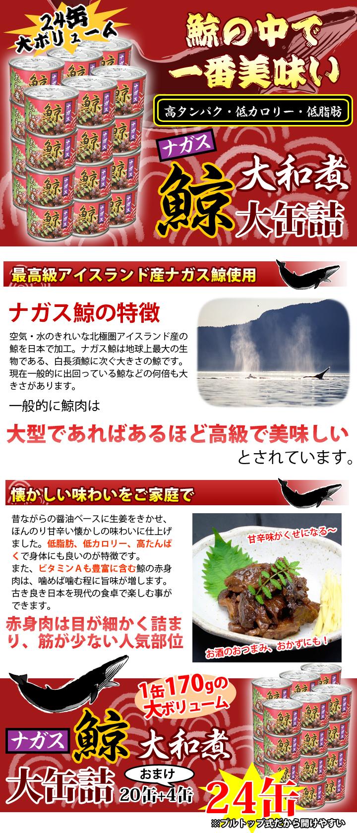快適生活のナガス鯨大和煮大缶詰24(20+4)缶