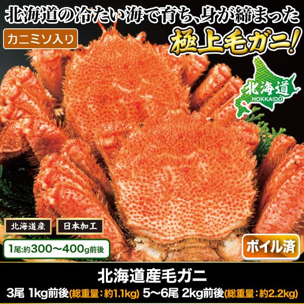 北海道産毛ガニ 3尾